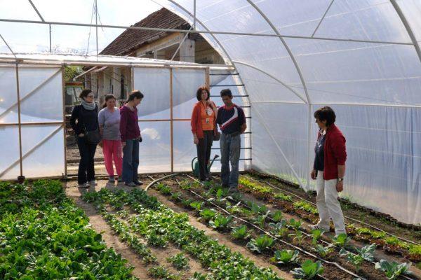 cries-agricultura-sustinuta-de-comunitate-24