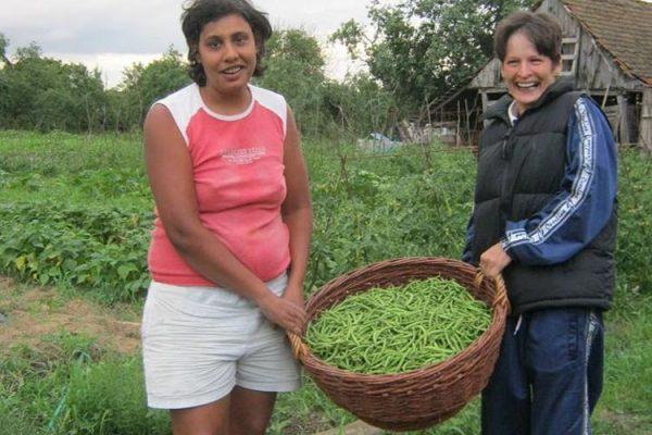 cries-agricultura-sustinuta-de-comunitate-35