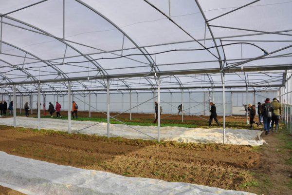 cries-agricultura-sustinuta-de-comunitate-5